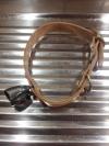 Jagdhunde Halsbänder mit Glocke